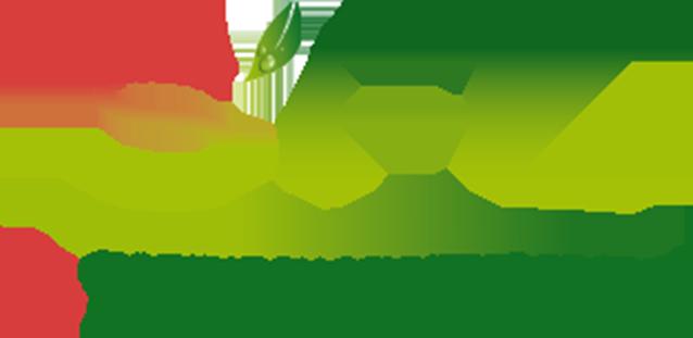 SFL-Rungis
